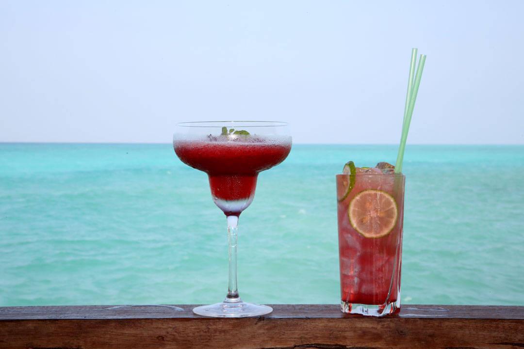 Frisktende drinker i nesten 40 graders varme. Foto: Erik Valebrokk