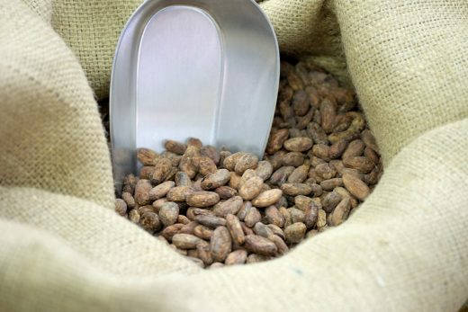 Kakaobønner.